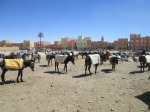 The local market parking lot. Donkeys are the transportation option of choice.